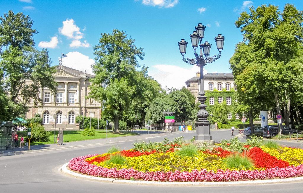 ゲッティンゲン大学 サマーコース 綺麗な花
