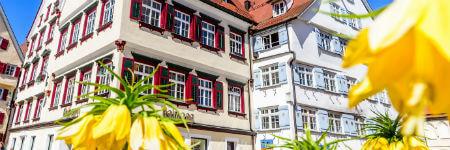 ビーバラッハ市役所と花壇の花