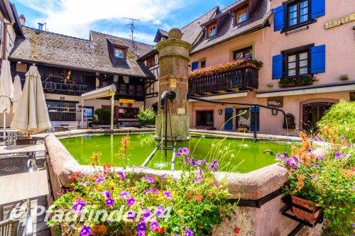 eguisheim (40)