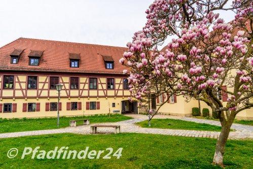 weissenburg 11