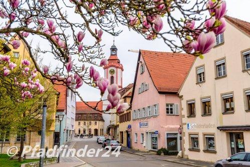 weissenburg 12